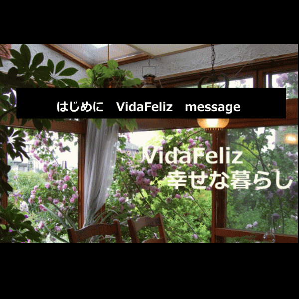 vidafeliz messeage